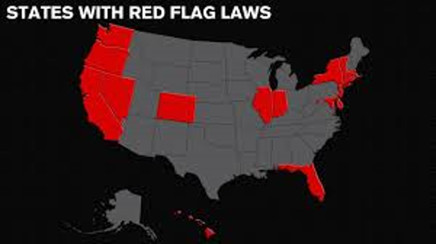 Democrat Red Flag Bill Violates the US and Virginia Constitutions